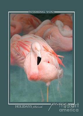 Photograph - Pink Flamingo 1 Tropical Bird Christmas Cards by Jai Johnson