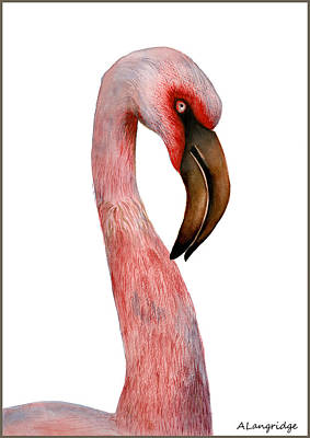 Painting - Pink Flamingo by Alison Langridge