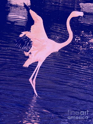 Photograph - Pink Flamingo by Avis  Noelle