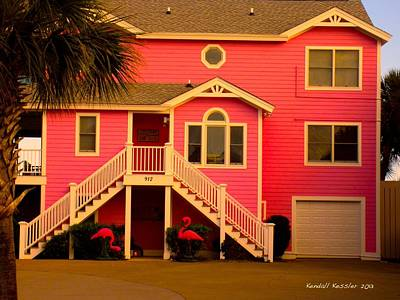 Photograph - Pink Flamingos At Isle Of Palms by Kendall Kessler