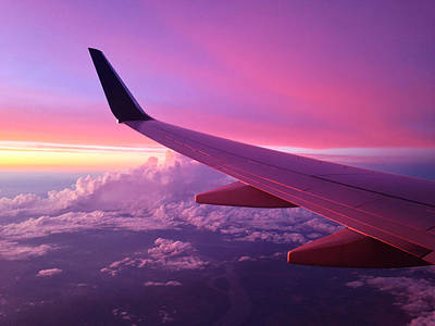 Airplane Photograph - Pink Flight by Chad Dutson