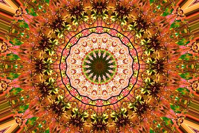 Photograph - Pink Floral Kaleidoscope by Sheri McLeroy