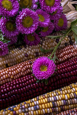 Indian Corn Wall Art - Photograph - Pink Flower And Corn by Garry Gay