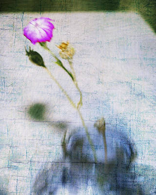 Photograph - Pink Flower Blue Vase by Marianne Campolongo