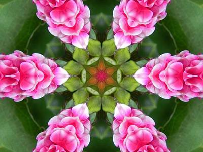 Digital Art - Pink Flower Star Mandala by Diane Lynn Hix