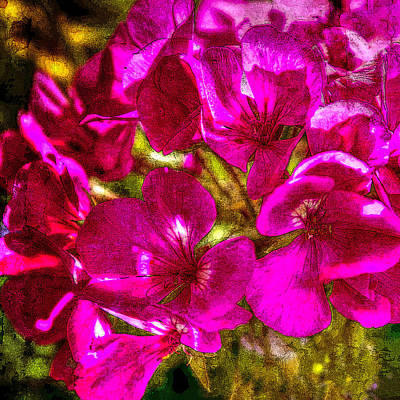 Photograph - Pink Flowers Lustre by Chris McKenna