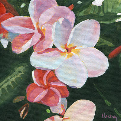 Pink Frangipani Original by Stacy Vosberg
