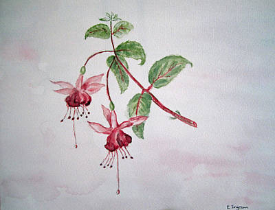 Pink Fuchsia's  Art Print by Elvira Ingram