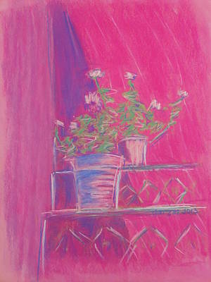 Pastel - Pink Geraniums by Marcia Meade