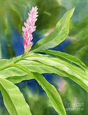 Tropical Plant Painting - Pink Ginger With Blue Green Background by Sharon Freeman