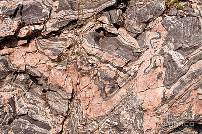 Art Print featuring the photograph Pink Gneiss Rock by Les Palenik