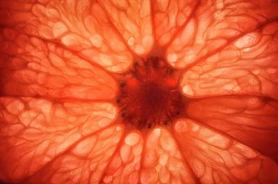 Grapefruit Photograph - Pink Grapefruit by Kaj R. Svensson