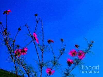 Pink Green And Blue Art Print by Tina M Wenger