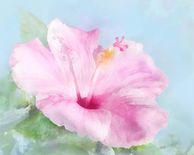 Digital Art - Pink Hibiscus by Francesa Miller