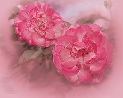 Digital Art - Pink Innocent Roses by Mary Almond
