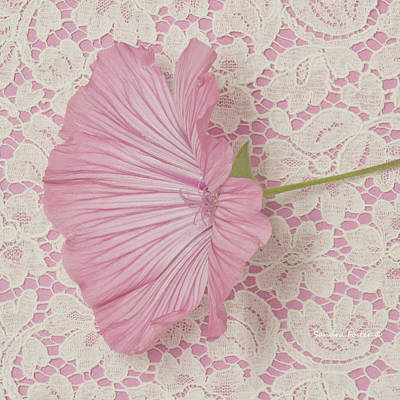 Country Living Magazine Style Photograph - Pink Lavatera Blossom On Vintage Lace - Macro by Sandra Foster