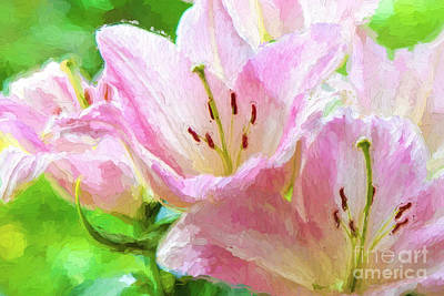 Photograph - Pink Lilies Digital Painting Impasto by Ed Churchill