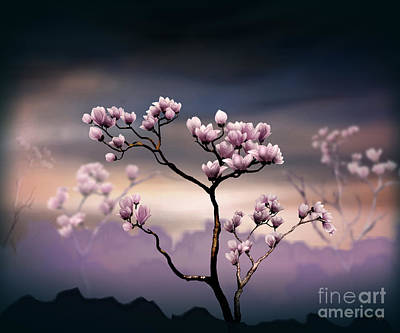 Awak Mixed Media - Pink Magnolia - Dark Version by Bedros Awak