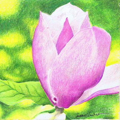 Art Print featuring the painting Pink Magnolia by Susan Herbst