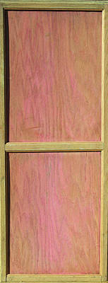 Found Object Painting - Pink Mahogany Blush Cabinet Door by Asha Carolyn Young