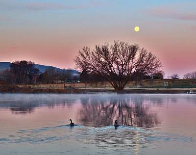 Art Print featuring the photograph Pink Morning by Lynn Hopwood
