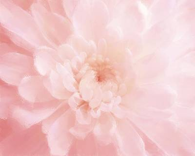 Pink Mum Luminous Painted Blossom Art Print by Patricia E Sundik