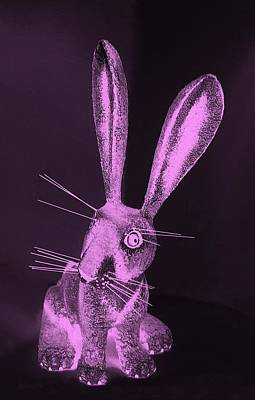 Photograph - Pink New Mexico Rabbit by Rob Hans