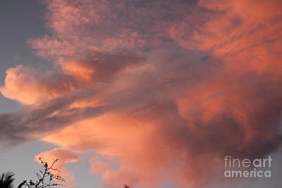 Photograph - Pink Orange Sunset Clouds by Lee Serenethos