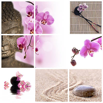 Feminine Photograph - Pink Orchid And Buddha Collage by Delphimages Photo Creations