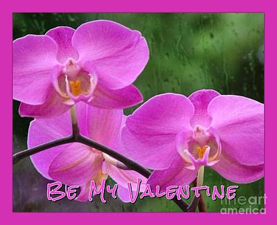 Photograph - Pink Orchids Valentine Greeting 2 by Joan-Violet Stretch