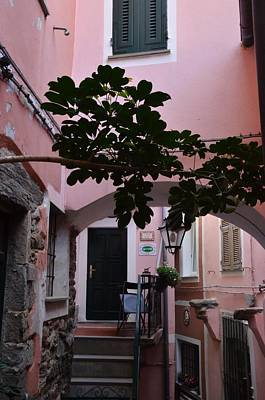 Photograph - Pink Patio by Dany Lison