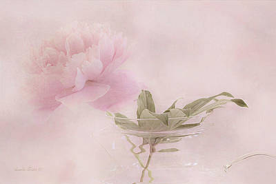 Victoria Magazine Style Photograph - Pink Peony Blossom In Clear Glass Tea Pot by Sandra Foster