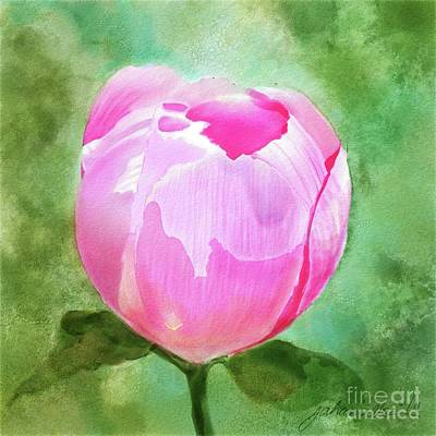 Pink Peony Bud Art Print by Joan A Hamilton