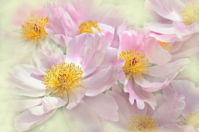 1920s Flapper Girl - Pink Peony Flowers Parade by Jennie Marie Schell