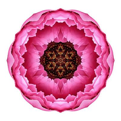 Photograph - Pink Peony I Flower Mandala White by David J Bookbinder