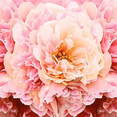 Photograph - Pink Peony by Michele Avanti