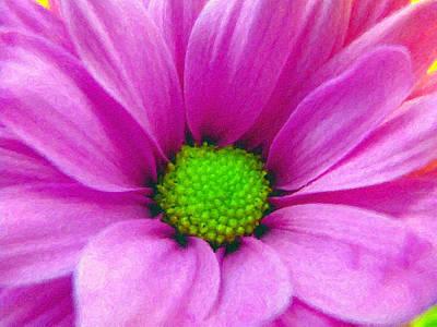 Photograph - Pink Petals - Digital Painting Effect by Rhonda Barrett