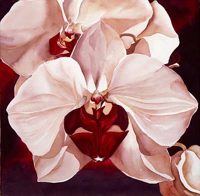 Pink Phoalenopsis Orchid Art Print by Alfred Ng