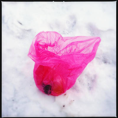 Pink Wall Art - Photograph - Pink Plastic Bag Lying On White Snow by Matthias Hauser