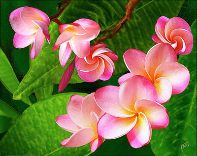 Photograph - Pink Plumeria by Ben and Raisa Gertsberg