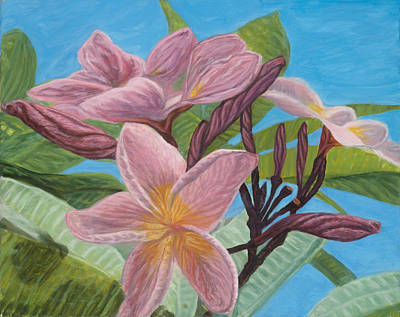 Painting - Pink Plumeria by Michael Allen Wolfe