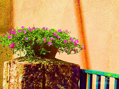 Pink Potted Flowers And Bench Art Print by Tina M Wenger