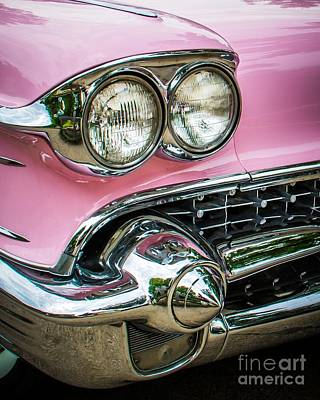 Photograph - Pink Power by Perry Webster