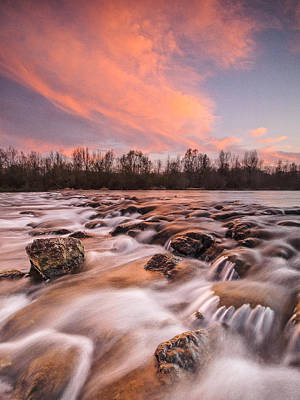Pink Rapids Print by Davorin Mance