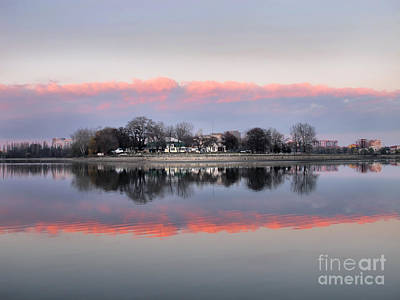 Photograph - Pink Reflection  by Daliana Pacuraru