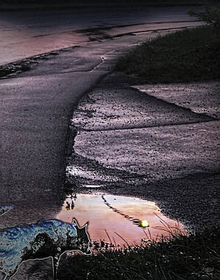 Phantom Dog Photograph - Pink Road With Ghost-dog by Nafets Nuarb