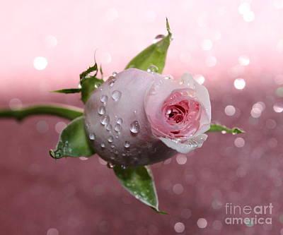 Pink Romance Art Print by Krissy Katsimbras