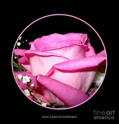 Photograph - Pink Rose 2 by Rose Santuci-Sofranko
