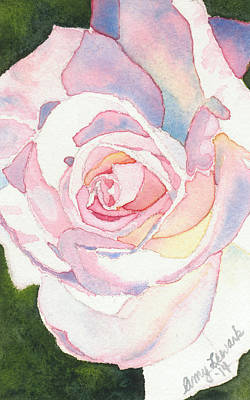 Painting - Pink Rose by Amy Lewark