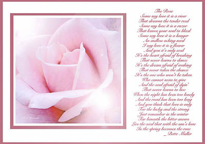 Pink Rose And Song Lyrics Art Print